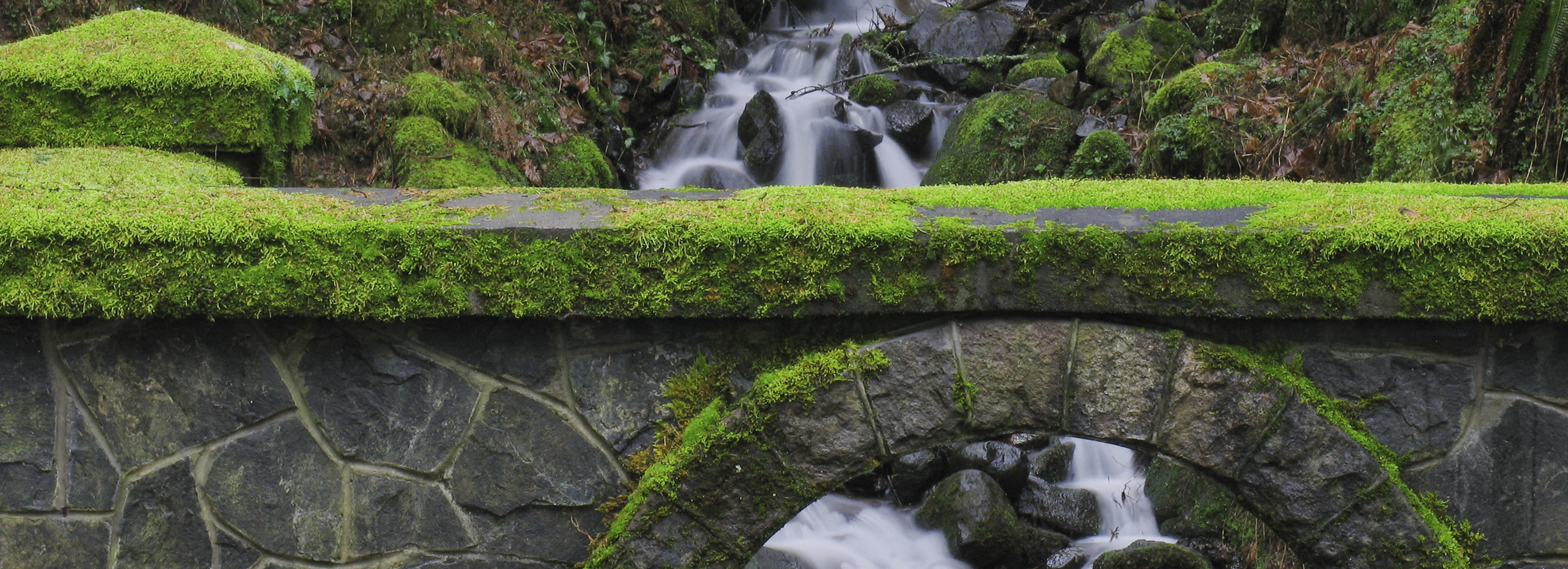 Mossy bridge waterfall