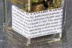 Detail_of_Medical_Cannabis_label_small_2.jpg